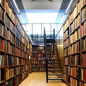 Библиотеки Бискамжи